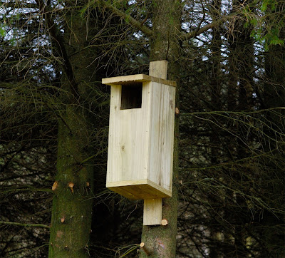 nestbox