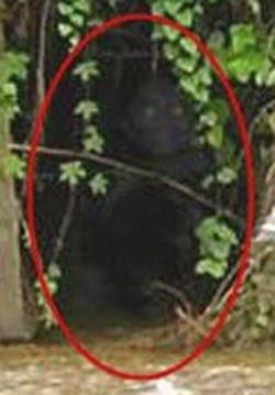 foto fantasma02  Eventos paranormais sinistros que circulam na net