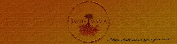 sachamama-film