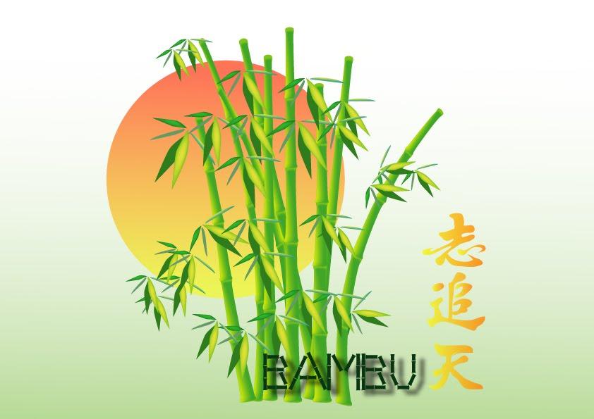 Imagenes De Bambu