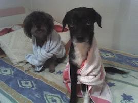 Nela y Lua despues del baño