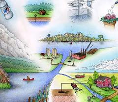 Carta Europeia da Água
