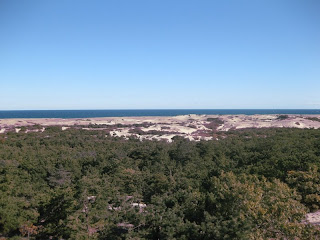 View Looking North from Province Lands Visitor Center