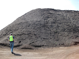 A pile of finished compost at Cedar Grove facility in Everett Washingon