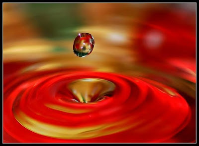 Redish color waterdrop beautiful pics