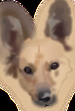 avances en el dibujo de mi perra Yeñé