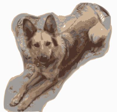 Mi perra Yeñé vectorizada según el tercer seteo