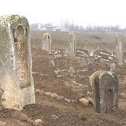 В Товузском районе обнаружен некрополь