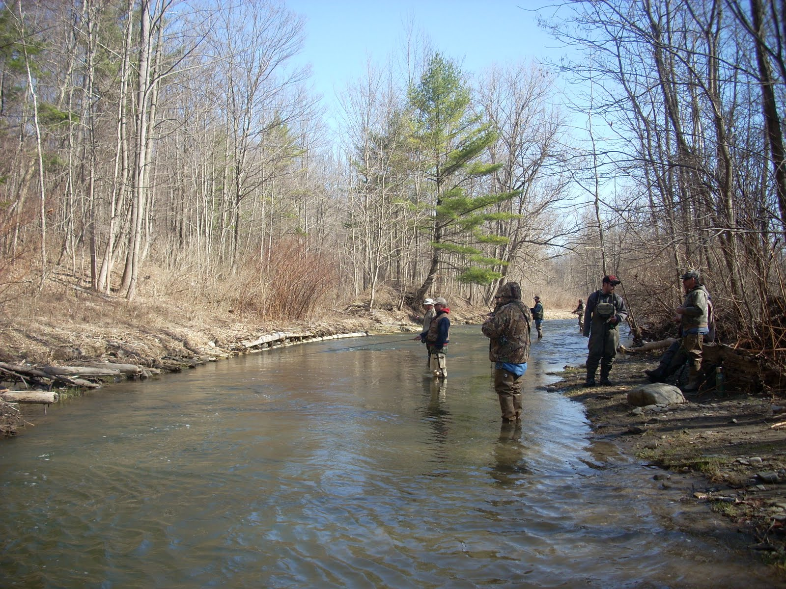 Catherine creek fly fishing for Trout fishing ny