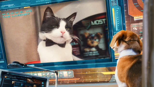 Cats and dogs 2 cats dogs the revenge of kitty galore 3 d movie review