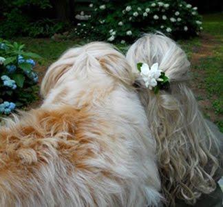 Edward In Spring