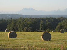 Hay Season