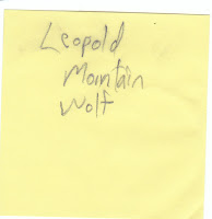 Leopold Mountain Wolf