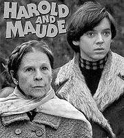 harold & maude movie