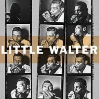 little walter - The Complete Chess Masters (1950-1967)