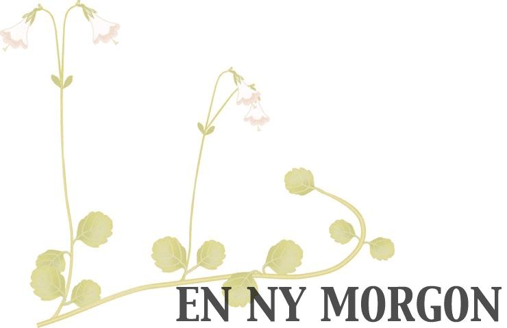 EN NY MORGON