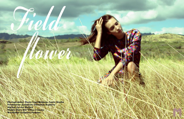 MATTE finish: Field Flower