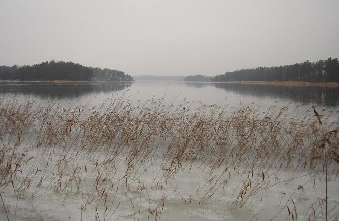 2009-01-20  Blött men för grunt för kanot (1 cm vatten - is under;-)