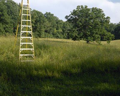 [ladder_c.jpg]