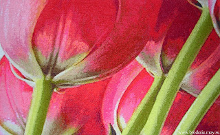 5 tulips i love crossstitch