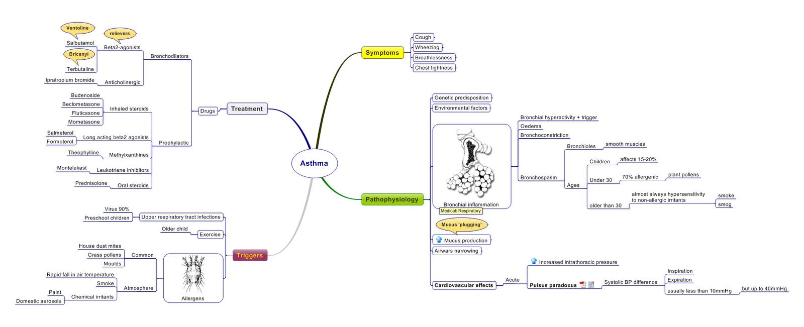Images Of Nursing Concept Map Copd SC - Nursing concept map generator