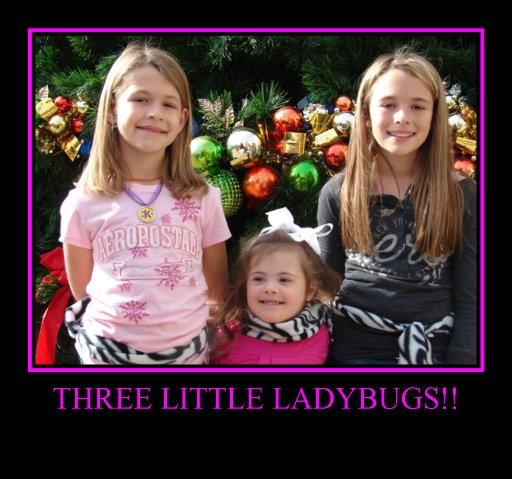 Three Little Ladybugs