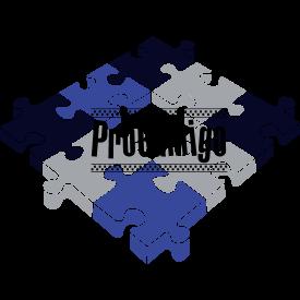 ProGamigo