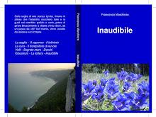 """""""Inaudibile"""" nuovo romanzo di F. Marchioro"""