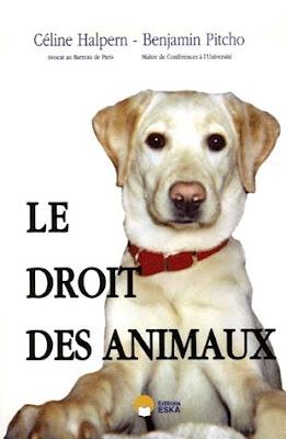 droit des animaux dissertation Le droit des animaux dissertation, business plan writers az, creative writing blind man you are here: home sem categoria le droit des animaux dissertation.