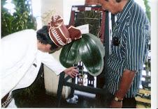 Phalaenopsis Gigantea Kebanggaan Taman Anggrek Kalimantan