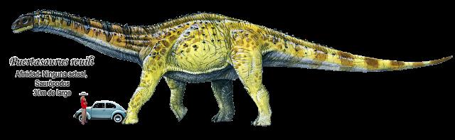 Puertasaurus reuili a escala.