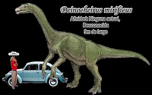 Deinocheirus mirificus a escala.