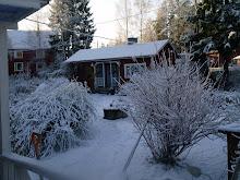 Talvi 2008/ Marraskuu