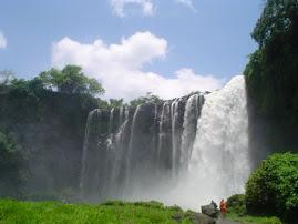 """""""Visita la cascada Salto de Eyipantla """""""