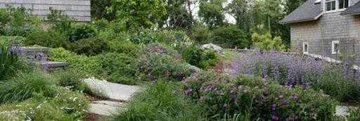 Garden eLetter
