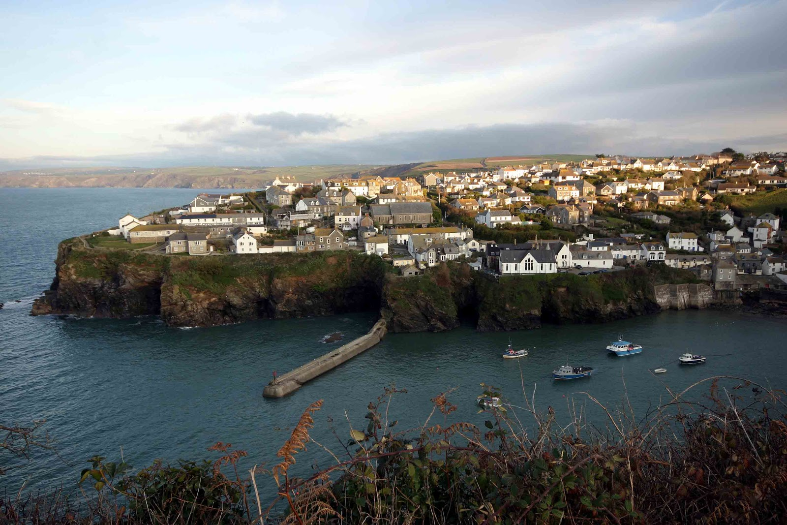 Dog Walks Near Port Isaac
