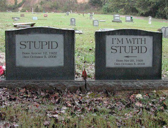 [stupid+and+stupid]