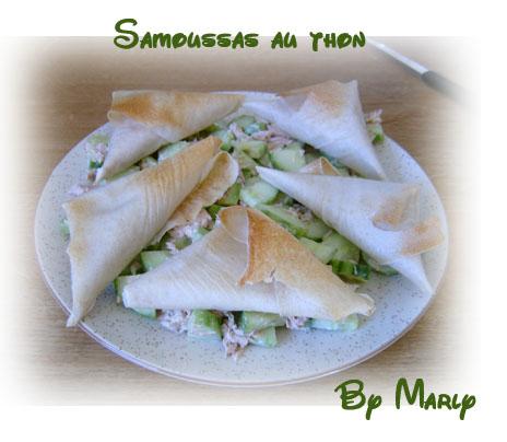 recettes  SAMOUSSAS REUNIONNAIS AU THON ET AU COMBAVA