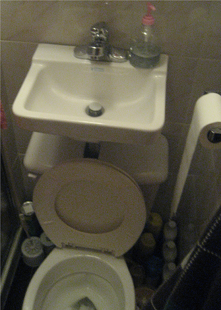 Sink Over Toilet : Queens Crap: Space-saving sink-toilet combo