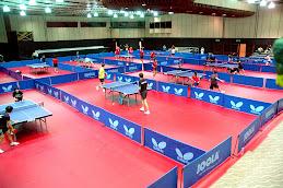Corner en el Mundial de Tenis de Mesa
