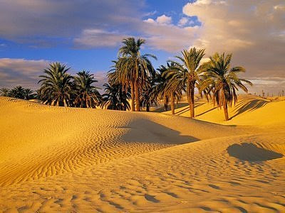 Photo Collection: Worlds Most Incredible Desert Oasis - Amazing ...