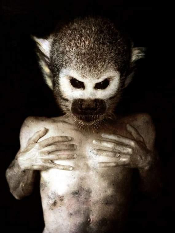 amaze pics amp vids creative but scary creatures