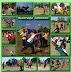 MAS1: Olahraga tahunan 2