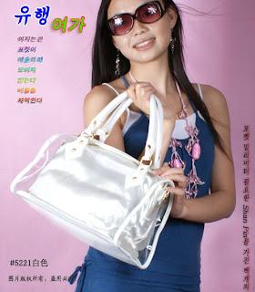 Korean Handbag