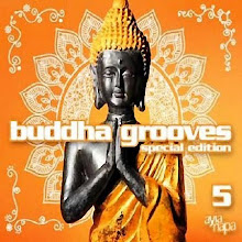 DESCARGA ESTE ALBUM : Buddha Grooves vol 5  2009