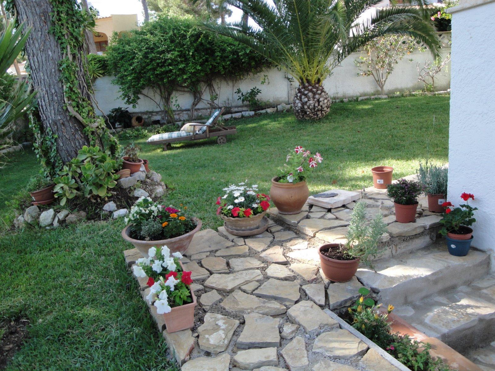 La mimosa de mi jardin el nuevo camino de piedra for Jardin de piedras