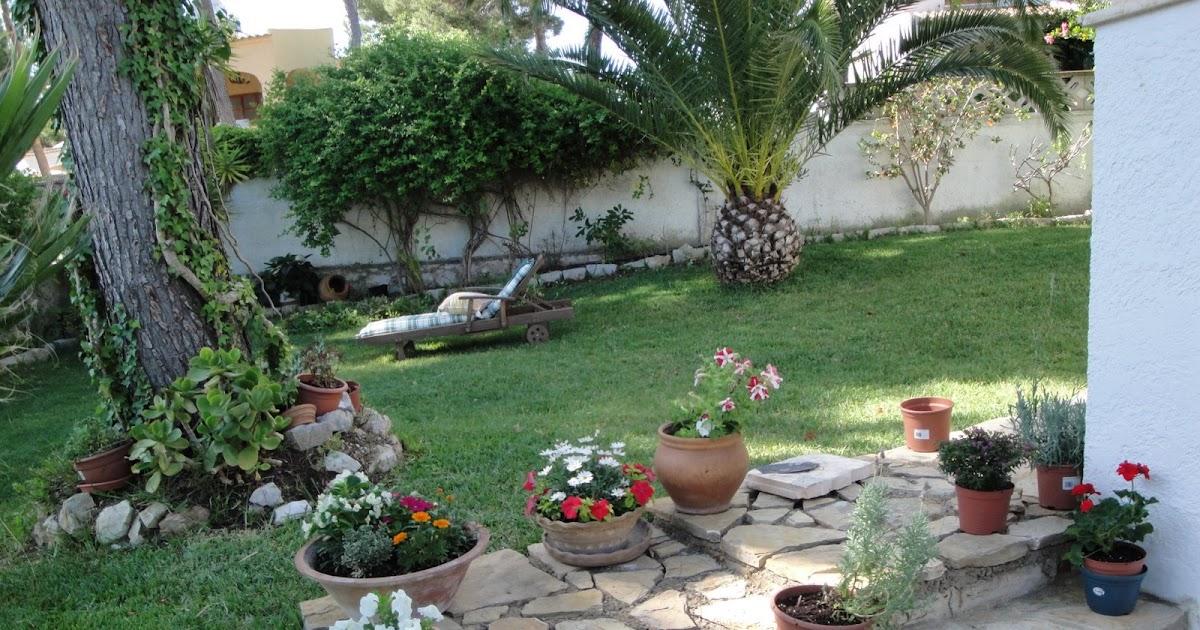 La mimosa de mi jardin: el nuevo camino de piedra