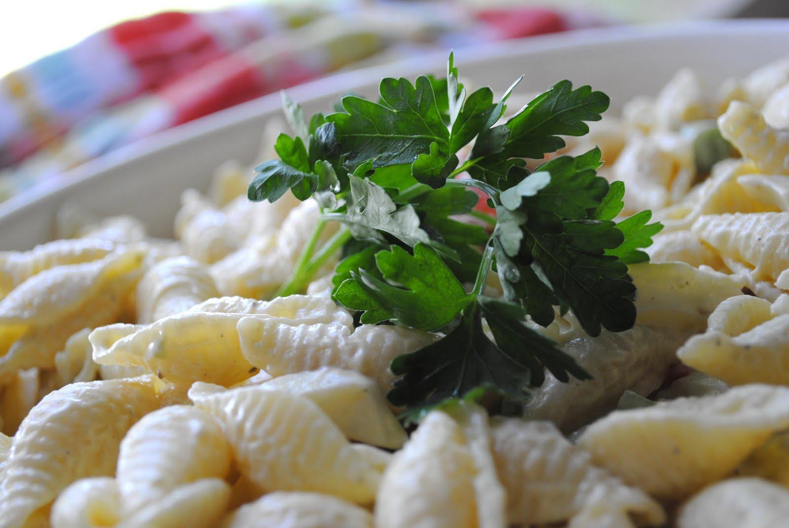 Zakka Life Recipe Shell Pasta Salad