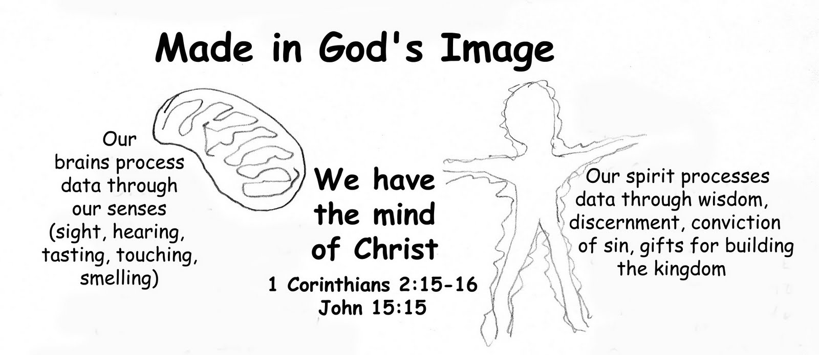made in God s image