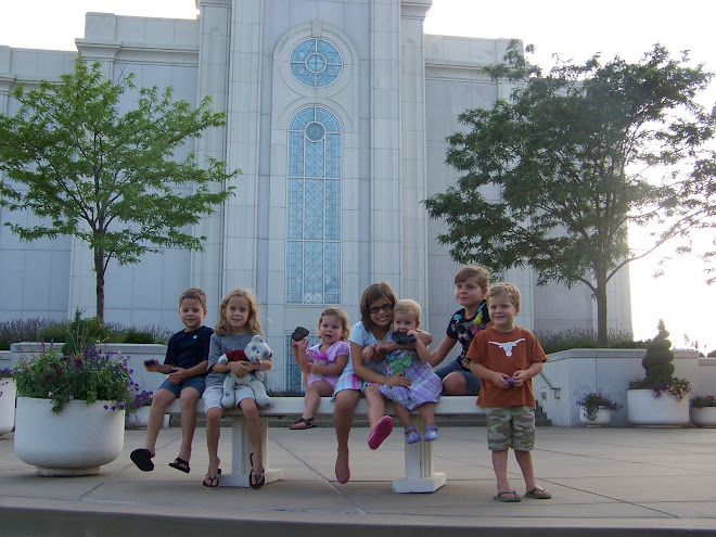 Cousins at St. Louis Temple